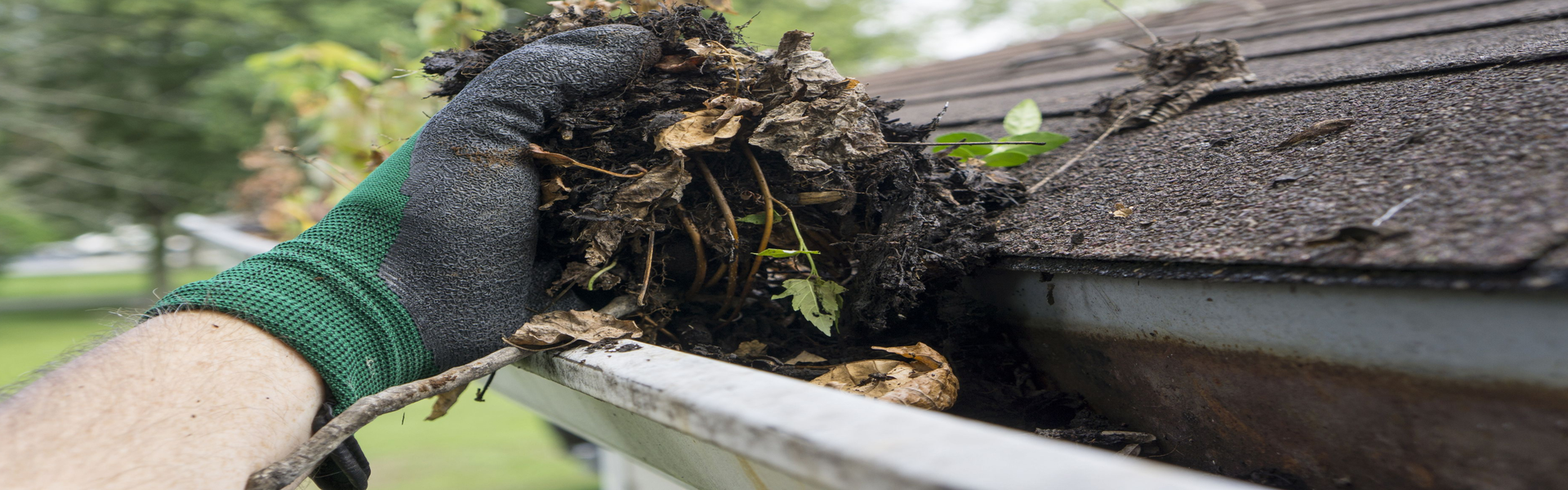 cleaning-gutters-during-the-summer-royalty-free-image-485292592-1541689661